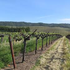 foothill fodder agriculture and natural resources blogs