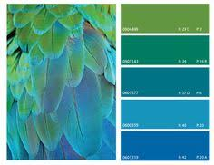 color combination for green blue and green color combinations google search color