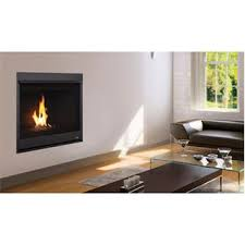 Superior Fireplace Glass Doors by Direct Vent Fireplaces Homeclick