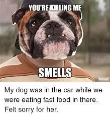 Meme Food - dogs meme youre killing me smells wuzu se my dog was in the car