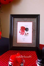 234 best lady bug party idea u0027s images on pinterest ladybug party