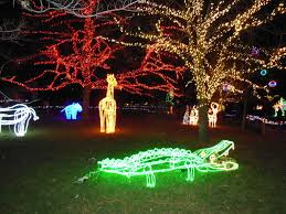 zoo lights at hogle zoo lighten up with a trip to zoolights daily utah chronicle