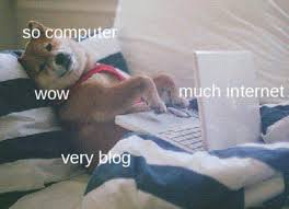 Doge Meme Tumblr - people tumblr meme laptop blog doge shibe people on tumblr in a gif