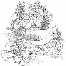 realistic flower coloring pages funycoloring