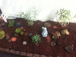 Rocks For Rock Garden Lava Rock Garden Garden Pinterest Gardens With Regard To Lava