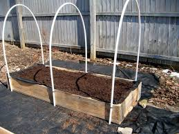 Pvc Raised Garden Bed - 1868 pleasant pvc hoop greenhouse for raised garden beds