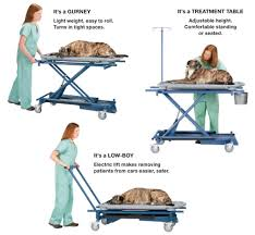 used electric lift table veterinary multi purpose electric lift