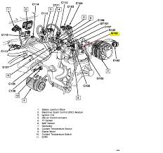 diagram chevy s10 engine wiring diagrams instruction