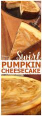 Gingersnap Pumpkin Cheesecake by Best 25 Pumpkin Swirl Cheesecake Ideas On Pinterest Pumkin