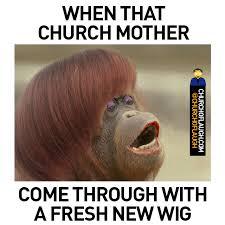 Wog Memes - funny wog memes memes pics 2018