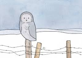 great gray owl and barbed wire fence drawing 100 owls