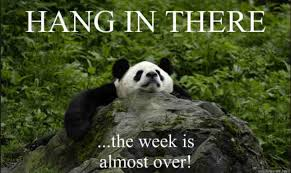 Hang In There Meme - 20 hang in there meme to motivate you live by the word