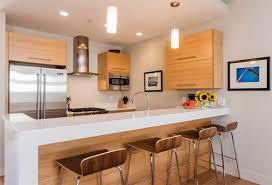 condo kitchen design ideas inspiring design ideas kitchen condo 20 dashing and streamlined