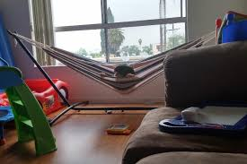 your guide to selecting the best indoor hammock thehammocklab com