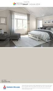 Wall Paint Colors by Best 25 Sherwin Williams Agreeable Gray Ideas On Pinterest
