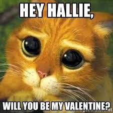 Will You Be My Valentine Meme - hey hallie will you be my valentine shrek cat 2 meme generator