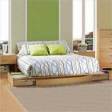 Raised Platform Bed Frame Bedroom Contemporary Platform Bed Steel Bed Frame