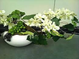 plante cuisine decoration deco plante cuisine salon la decoration des plantes dinterieur a