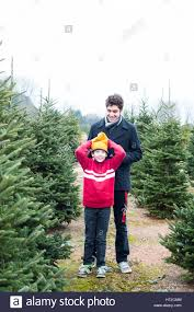 Having Fun At The Cut Your Own Christmas Tree Farm Stock Photo