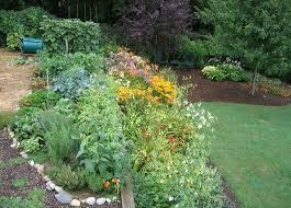 3 labor saving garden tips and contest your easy garden