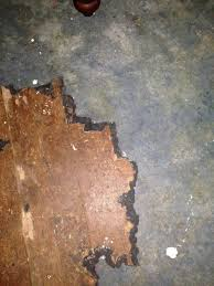 How To Remove Laminate Flooring Glue Subfloor What Is This Old 1 16