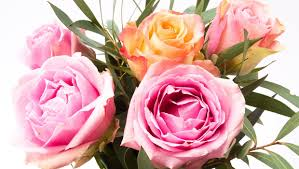 the best time to order valentine u0027s day flowers as soon as possible