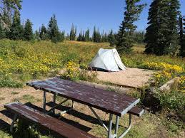 point supreme campground cedar breaks ut 1 hipcamper review and