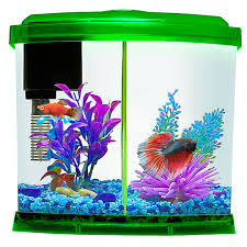 aquariums fish tank supplies u0026 stands petsmart