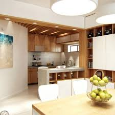 Kitchen Living Room Divider Ideas Divider For Living Room Home Design Ideas
