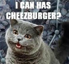 I Can Has Cheezburger Meme - i can has cheezburger a visual guide to 4 market risks spdr