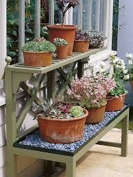 best 25 large garden pots ideas on pinterest large plant pots