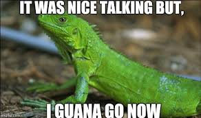 Animal Pun Meme - i guana go now imgflip