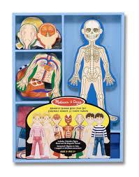 Human Body Anatomy Pics Amazon Com Melissa U0026 Doug Magnetic Human Body Anatomy Play Set