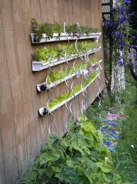 18 best make gutter garden images on pinterest gardening