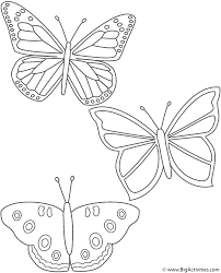 three butterflies coloring page insects