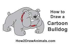 how to draw a bulldog cartoon