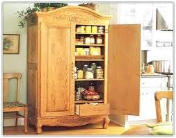 Kitchen Freestanding Pantry Cabinets Free Standing Pantry Cabinet Unispa Club