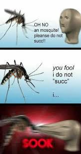 Mosquito Meme - dopl3r com memes oh no an mosquite pleanse do not succ you