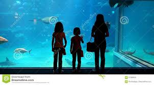 japanese aquarium a mother and her children looking at fish in a giant aquarium