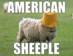 Sheeple Meme - stupid sheep imgflip