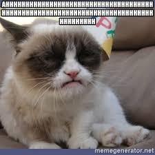 Grumpy Cat Meme Creator - 81057017 jpg
