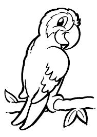 coloriage pour enfant un perroquet sur une branche coloriages d