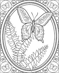 butterfly coloring pages colouring detailed advanced
