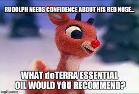 Oil Meme - doterra christmas guessing game meme essential oil memes