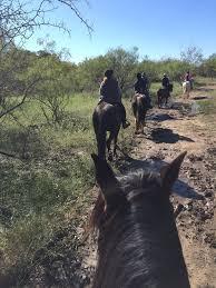 Black Mustang Ranch Pilot Point Texas Photos For Black Mustang Ranch Yelp