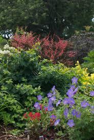 perennial garden vegetables professional secrets for growing perennial flowers