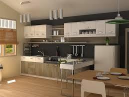modern kitchen houzz modern kitchen design pictures ideas amp with houzz remodel