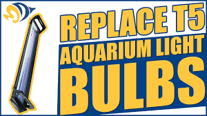 aquarium light bulb replacement how to replace t5 metal halide power compact aquarium light bulbs