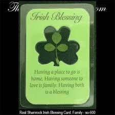 blessing cards real shamrock blessing cards