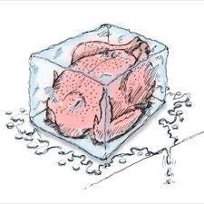 how to thaw a frozen turkey leite s culinaria